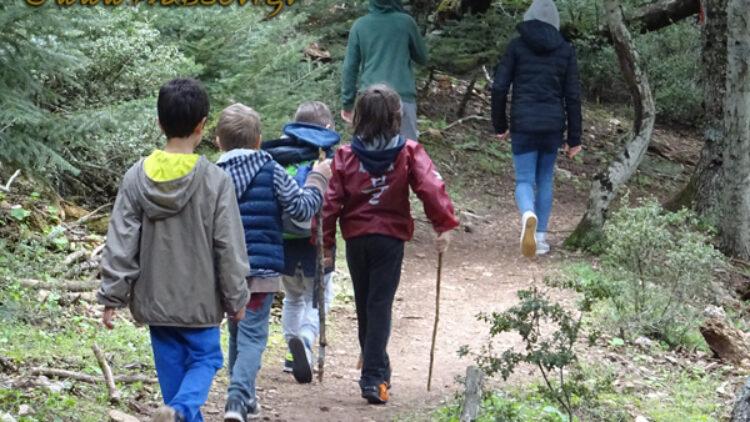 Πεζοπορία για μικρούς και μεγάλους στην Πάρνηθα